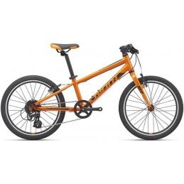 ARX 20-M20-orange/black