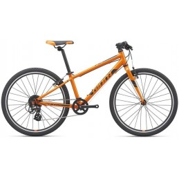 ARX 24-M20-orange/black